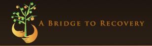bridgetorecovery